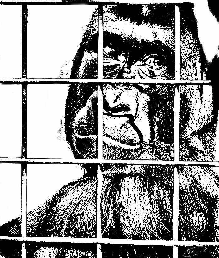 En prison sans jugement