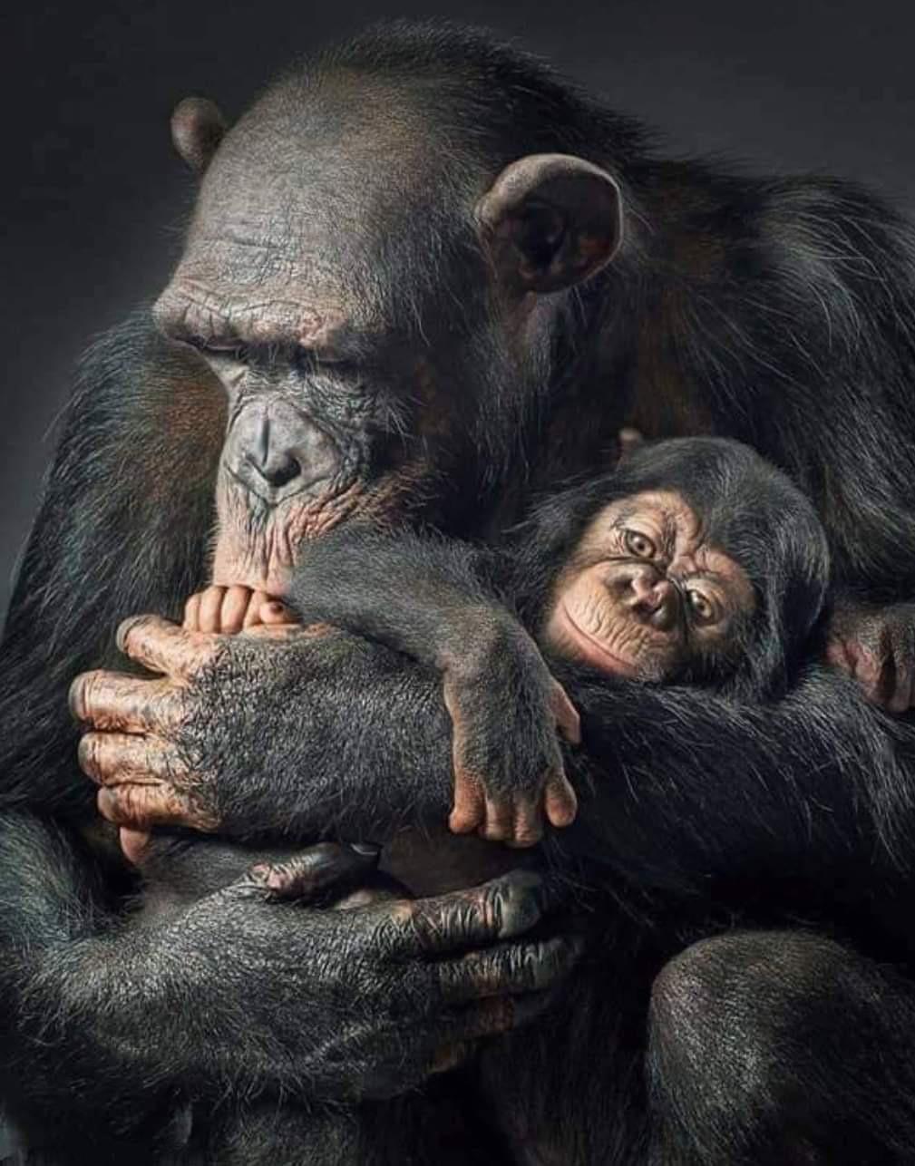 Maman et son bébé